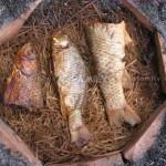 Cá nướng úp chậu (Đặc sản Nam Định)