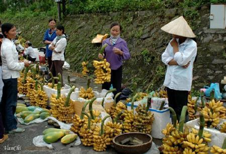 một phiên chợ chuối ở Nam Định