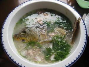 Cháo cá chép vô cùng thơm ngon bổ dưỡng